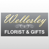 Wellsley 278 Window Lettering