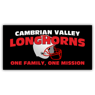 Cambrian Valley Longhorns