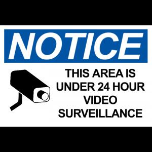 Surveillance Camera - Blue
