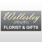 Wellsley 278 Window Lettering