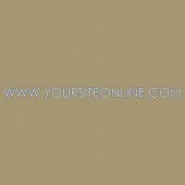 Website 229 Wall Lettering