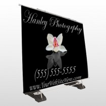 Flower 41 Exterior Pocket Banner Stand